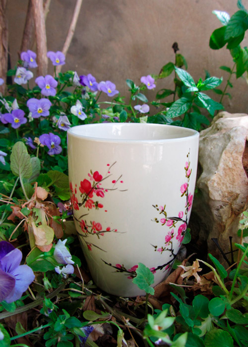 cup with blossoming branch